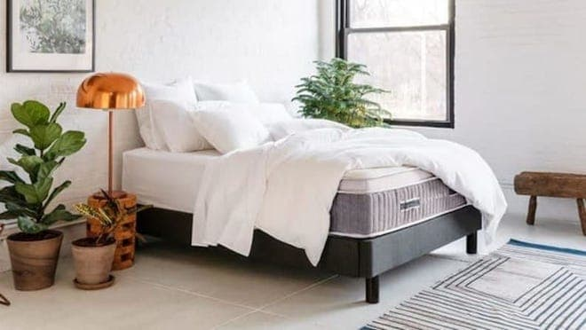 Comfy mattress with white comforter in a simple apartment with some plants