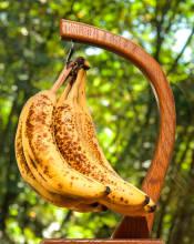 Banana Bread Time
