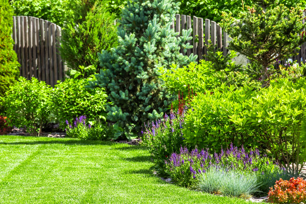 The secret to growing your best garden - Reviewed Home