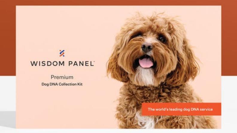 Dog DNA test box.