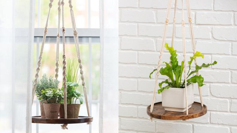 Potted plants sit on a hanging macrame shelf.
