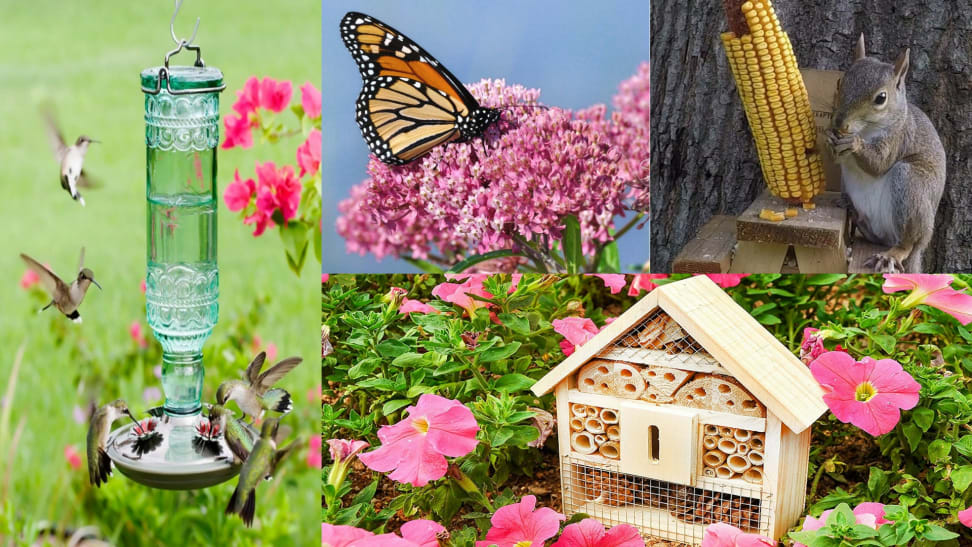 10 products that will help attract wildlife to your own backyard