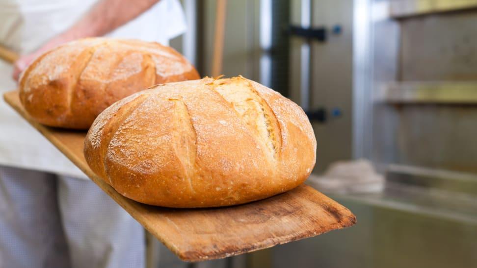Steam bath vs. Dutch oven: Which makes better bread?