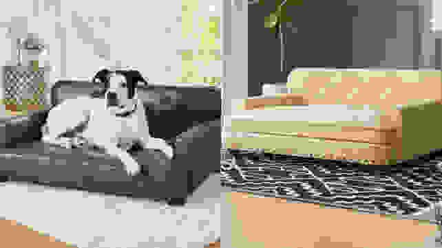 Consuelo Dog Sofa