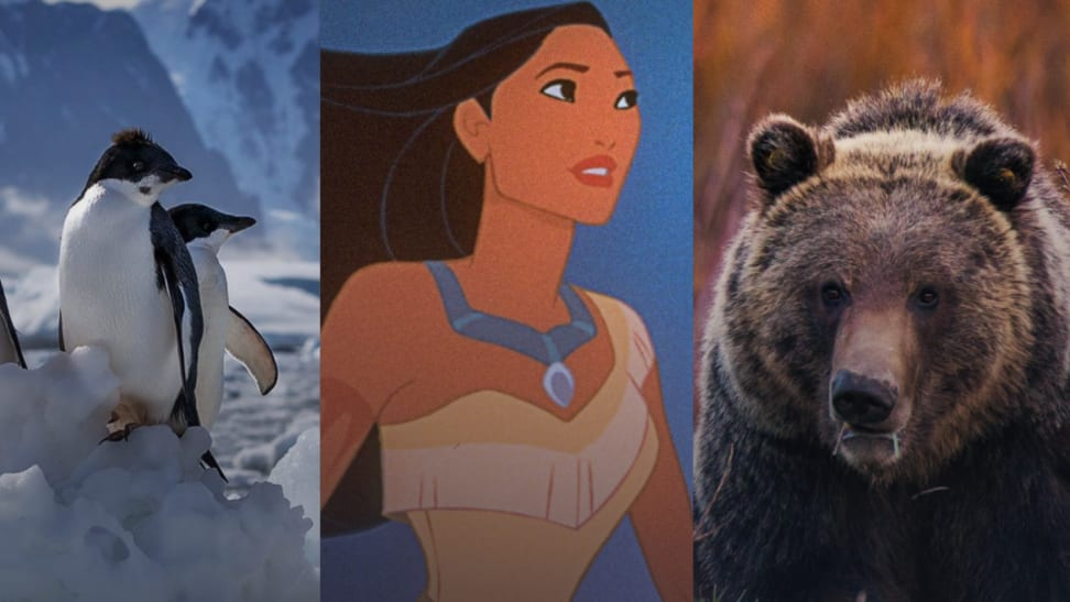Screenshots of Penguins, Pocahontas, and Wild Yellowstone on Disney+