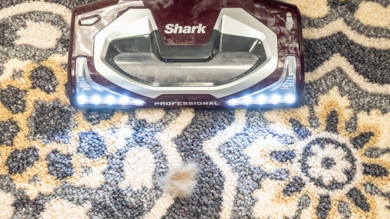 Shark testing pet hair