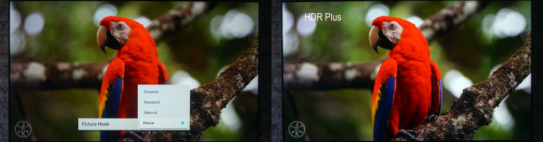HDR-plus-comparison