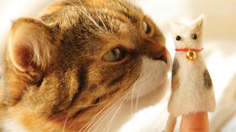 An image of a cat sniffing at a cat-shaped finger puppet.