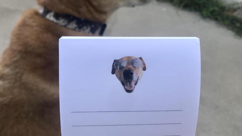 Rocky notepad