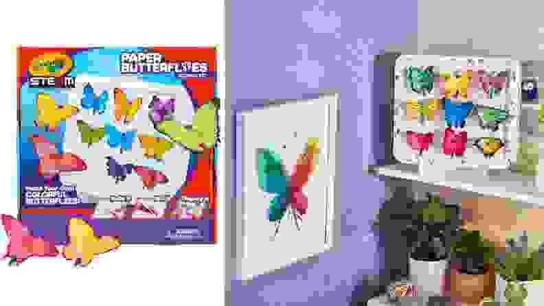 Children's butterfly science kit.