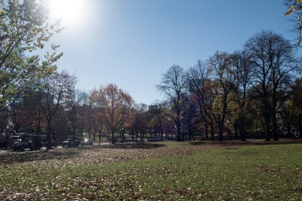 EXIF: 11mm, 200 ISO, 1/320, f/4.5