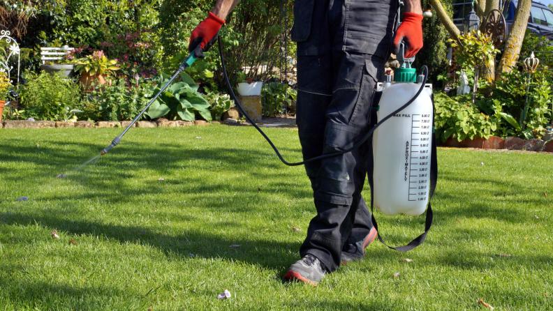 spraying fertilizer