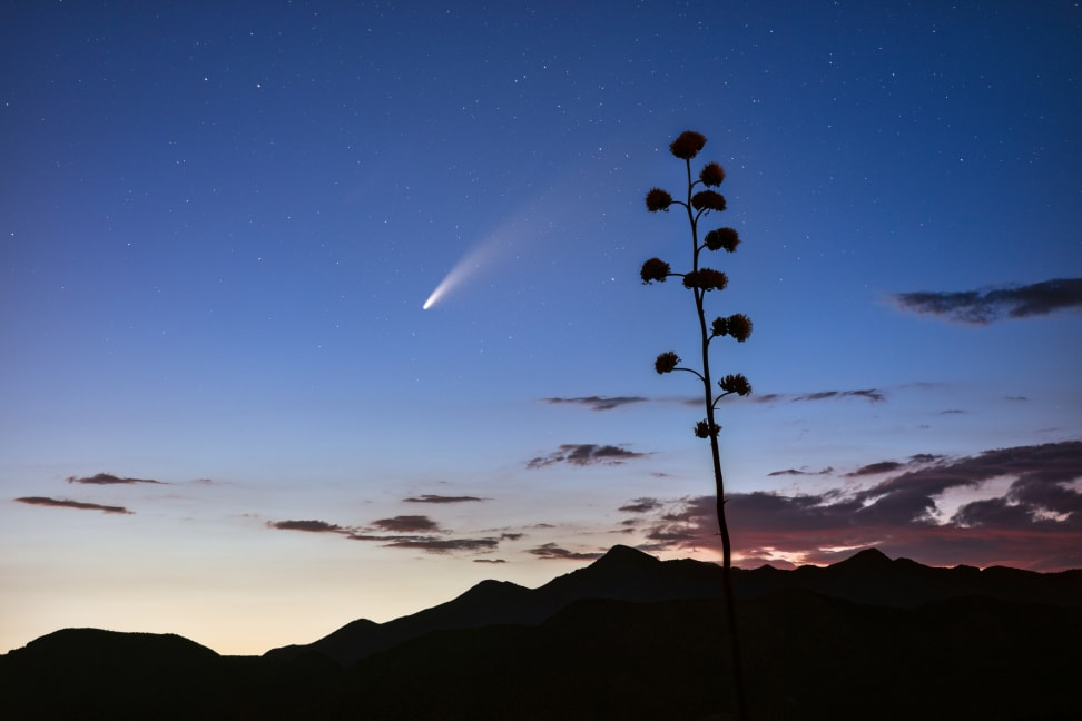 The NEOWISE comet in the Northern Hemisphere night sky