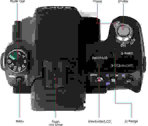 SONY-SLT-A55V-top.jpg