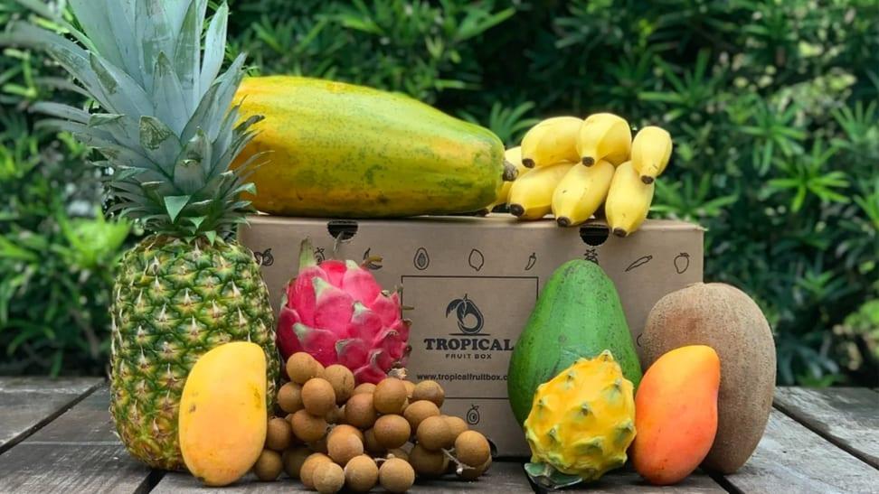 Tropical Fruit Box review