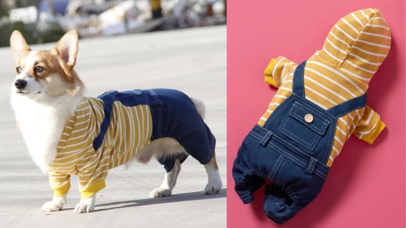Pup overalls