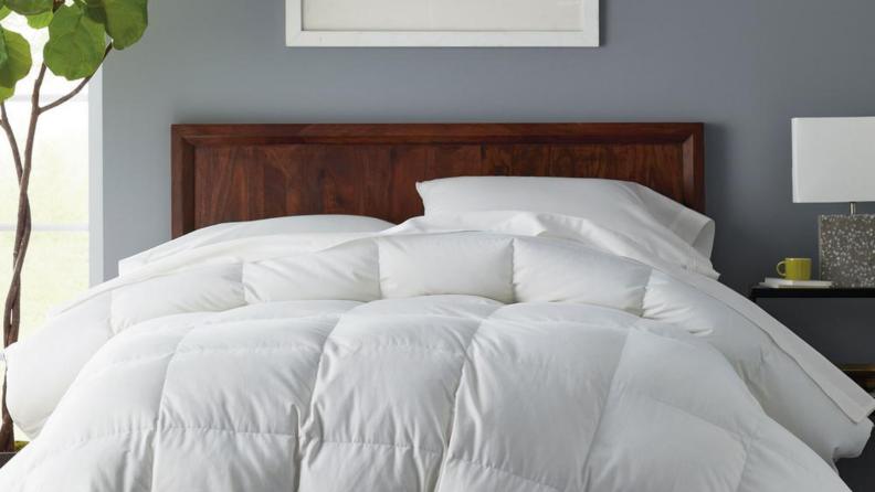 Alberta Comforter