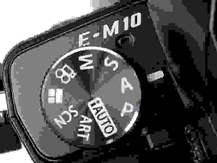 logocrop.jpg