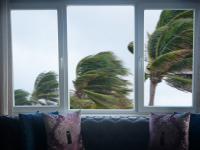 Living room with couch and large windows looking out to palm trees blowing from extreme winds