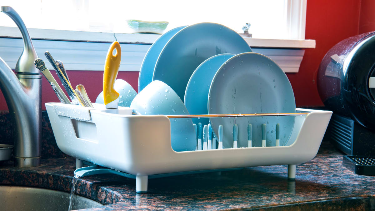 The Best Dish Racks of 2019