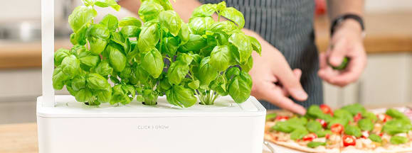 Click and grow smart planter lead