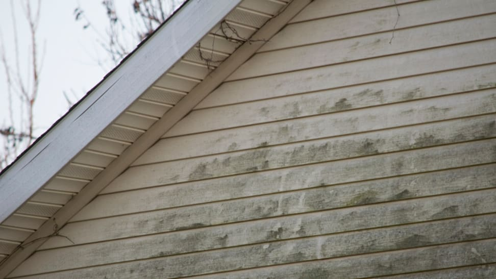 Yes, you need to clean the vinyl siding on your house—here's how