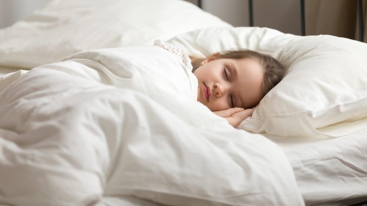 The best down comforters
