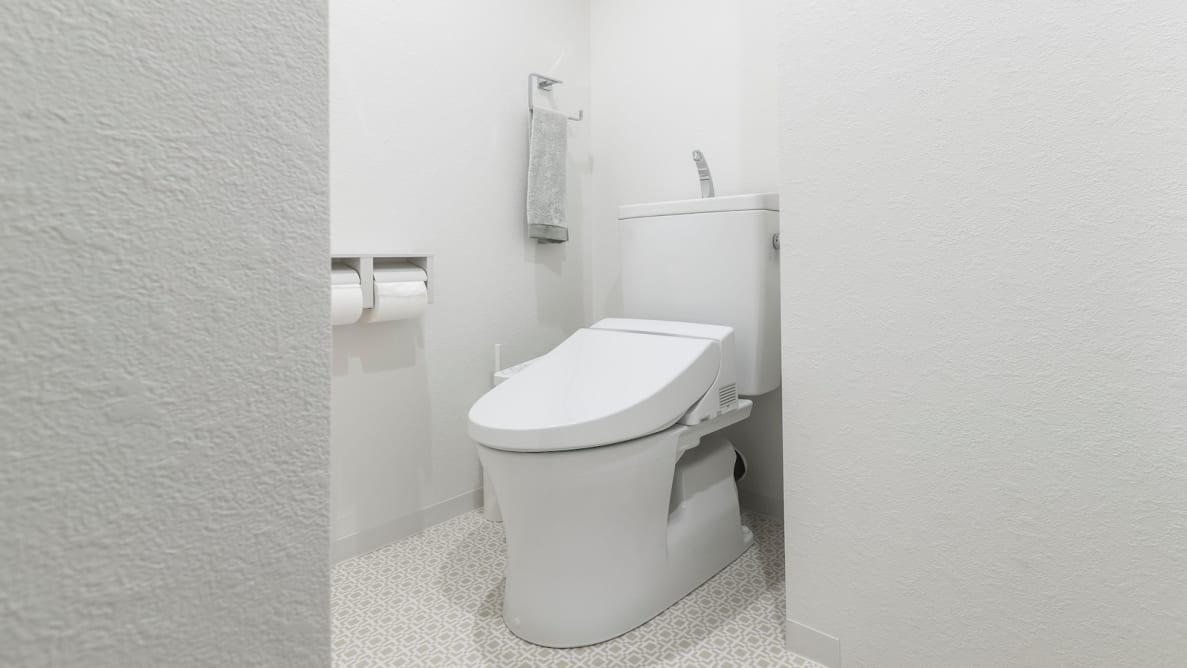 Bidet Toilet Seats sit on top of your existing toilet.