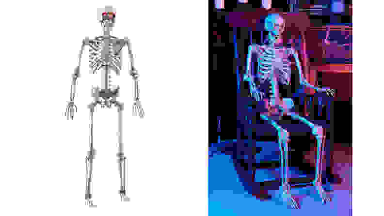 Home Accents 5 ft. Poseable Skeleton