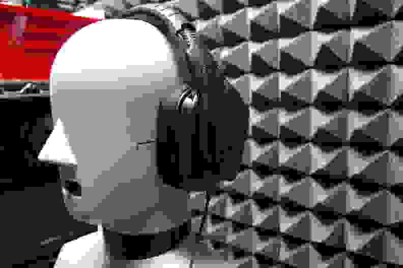 head_torso_simulator