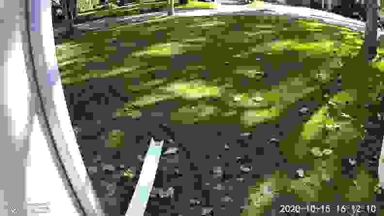 Wyze Outdoor Cam view