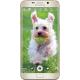 Product Image - Samsung Galaxy S6 edge+
