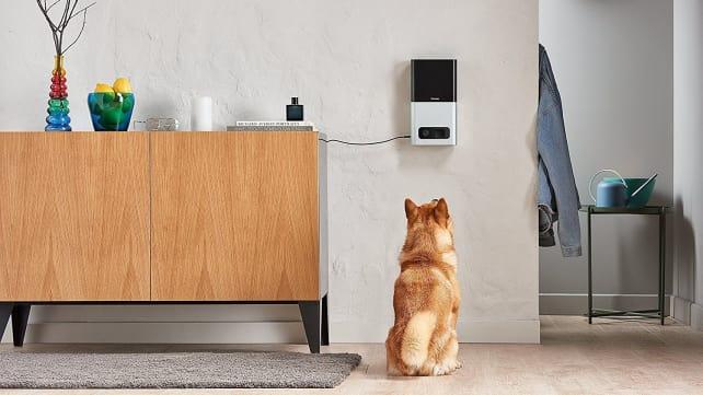 Petcube Camera and Treat Dispenser