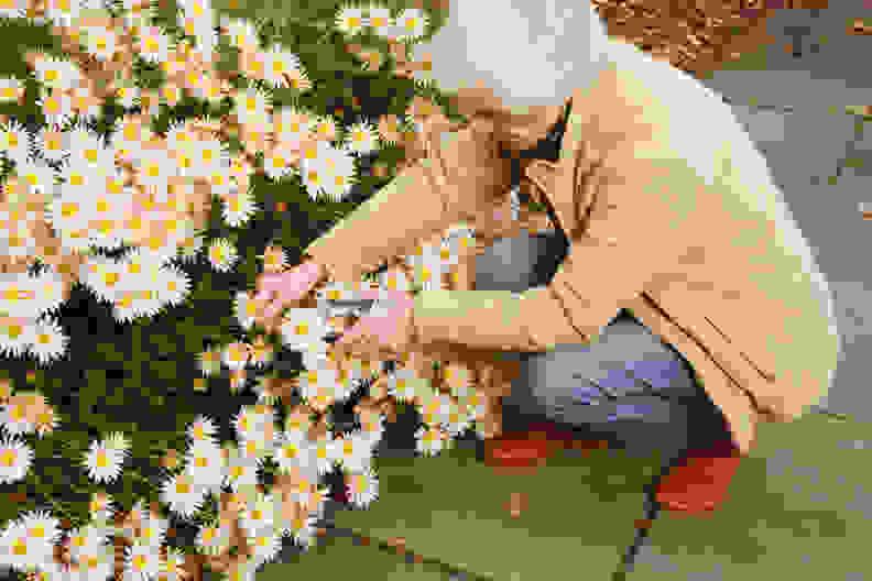 GardeningPath