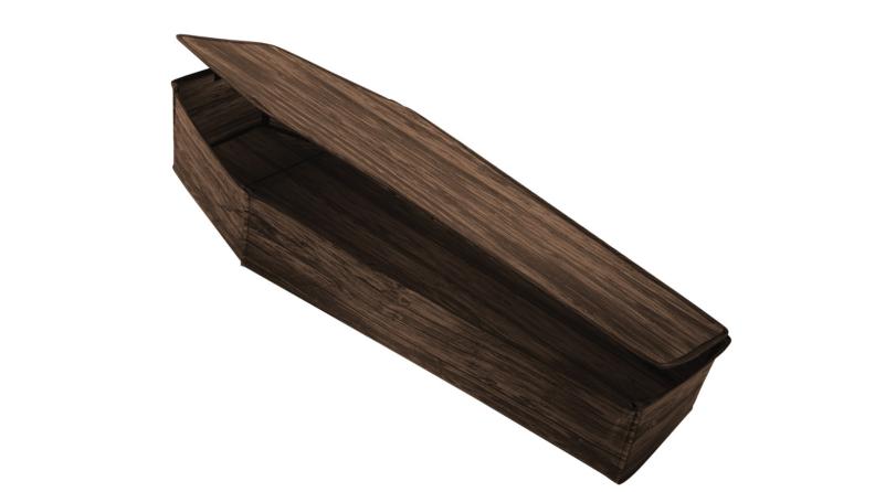 Fake coffin