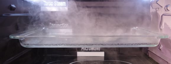 Panasonic microwave steam hero