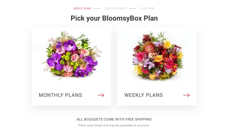 BloomsyBox menu
