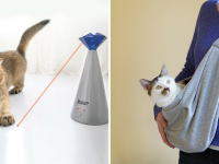 Ten best products-to buy-for your cat