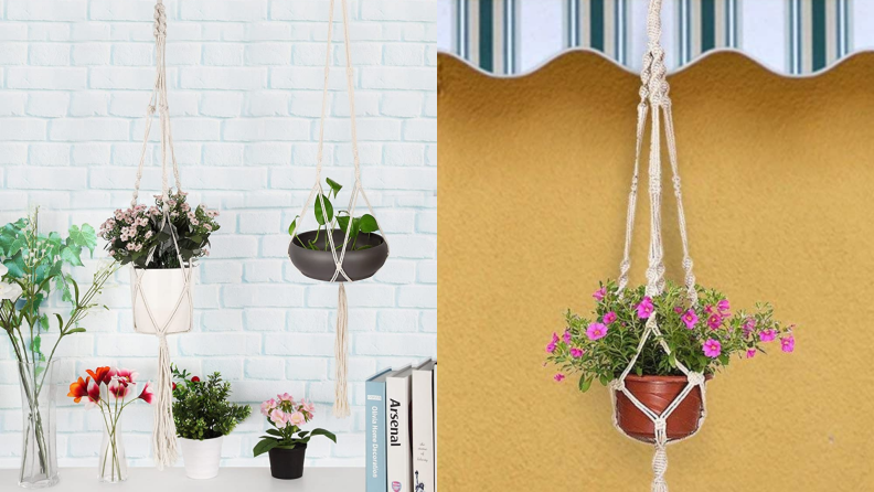 An assortment of plants hang outside on macrame plant hangers.