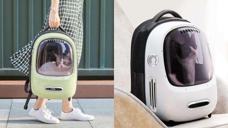 Daley Breezy pet carrier