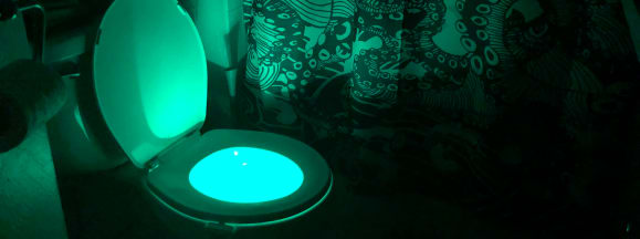 Vintar toilet light