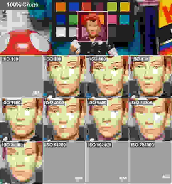 fujifilm-x-a2-rosie-crops.jpg