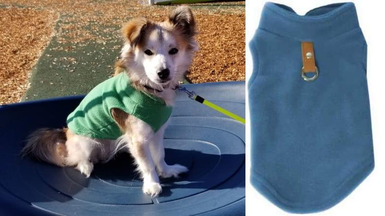 Gooby dog vest