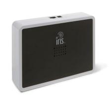 Lowe's Iris