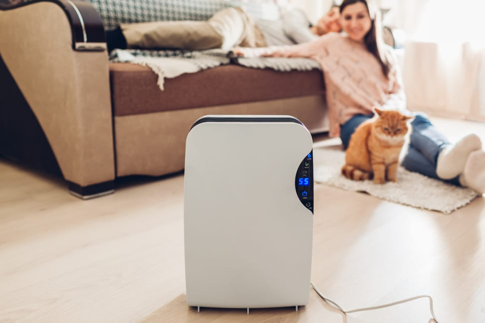 Stand-alone dehumidifier with a person and a cat in the background