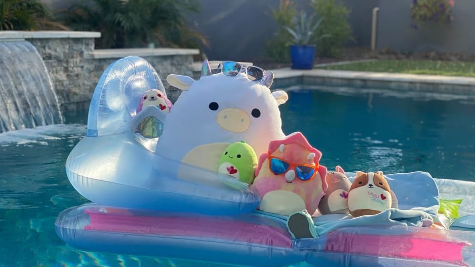 A variety of differently sized Squishmallows sit atop a pool floaty in a swimming pool
