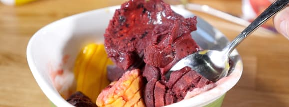 Gourmia ice cream