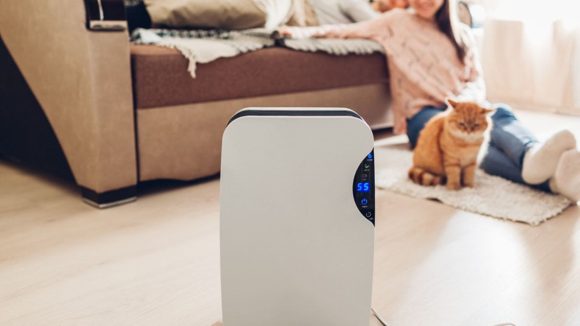 The Winix 5500-2 is our favorite air purifier.