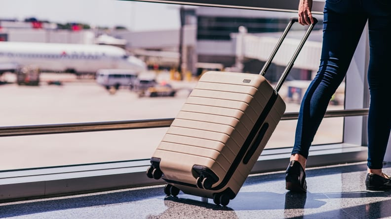 Buy luggage in March to save money