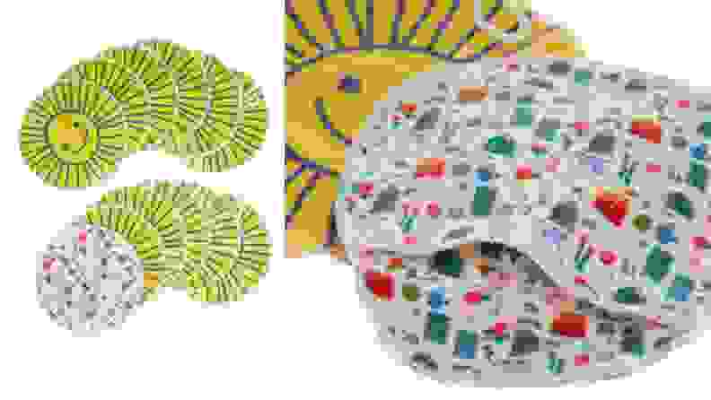 Microfiber Mitts Clean Dorm Essentials